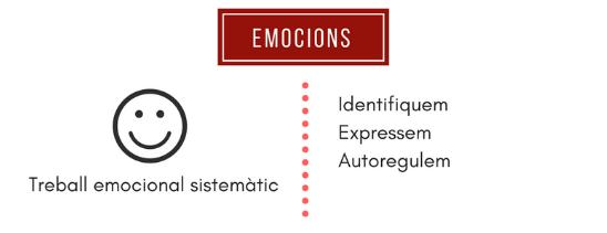 Captura emocions.PNG