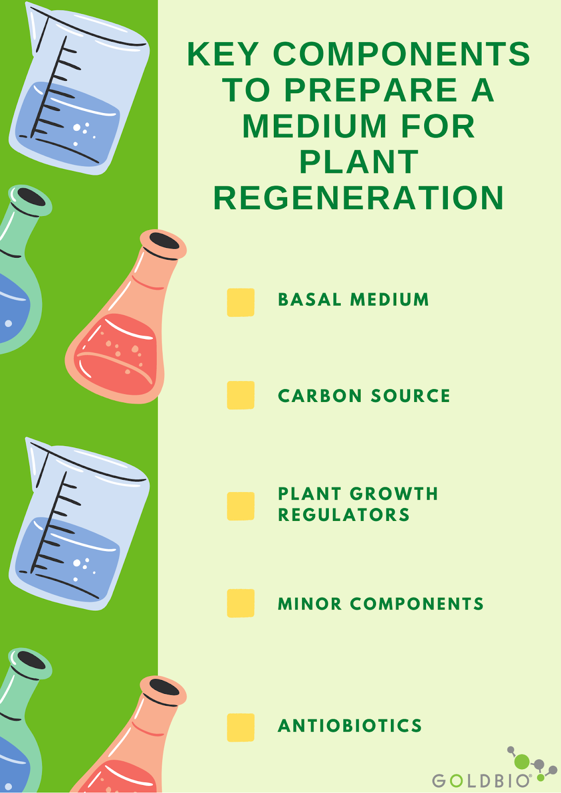 Key components to consider when preparing plant medium for plant regeneration: basal medium, major and minor components, and antibiotics. All need optimized to make an effective plant medium for regeneration.