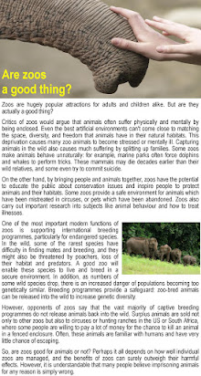 Persuasive Essay About Zoos Essay Writing Tips