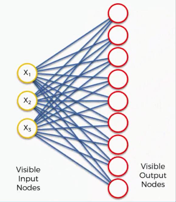 visible input nodes