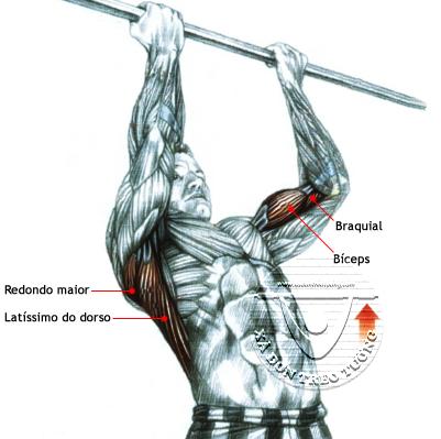 Luyện tập với gậy xà đơn giúp tác động lên nhiều nhóm cơ bắp khác nhau