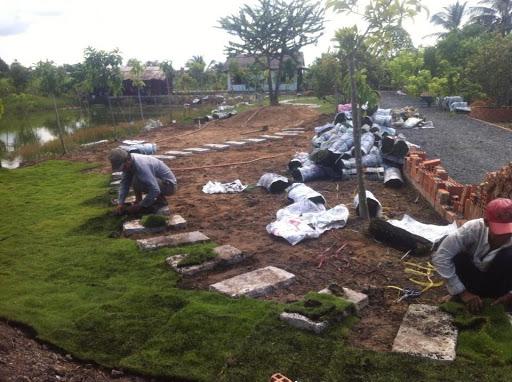 Chăm sóc cỏ sẽ tạo ra một môi trường sạch