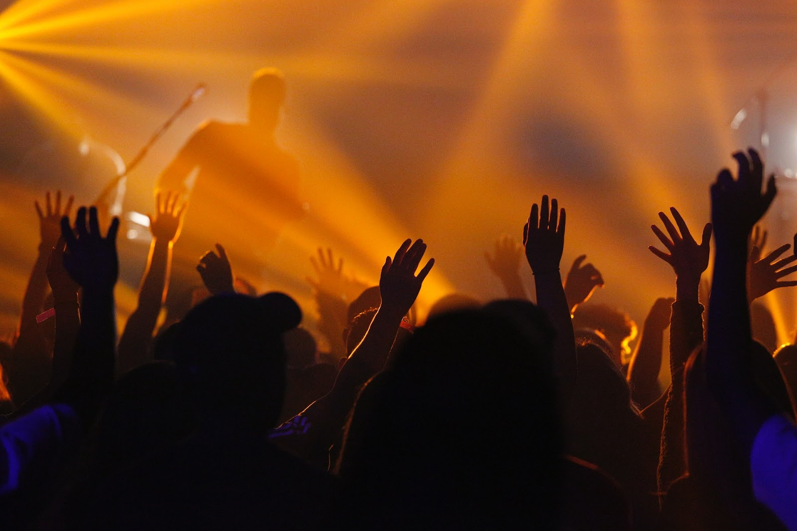 Image of people at concert
