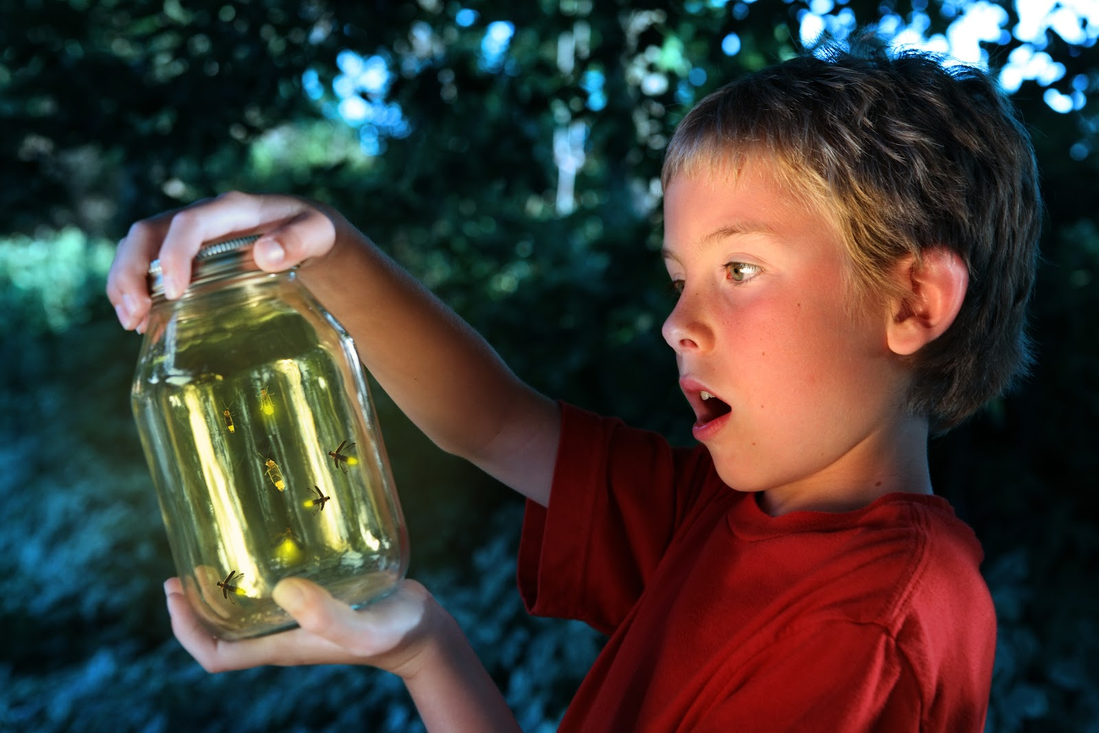 A young boy looking in awe at fireflies caught