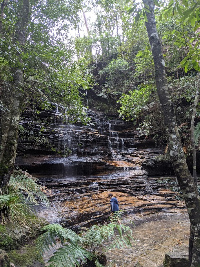 school holidays in the Blue Mountains, 5 waterfalls loop track south lawson