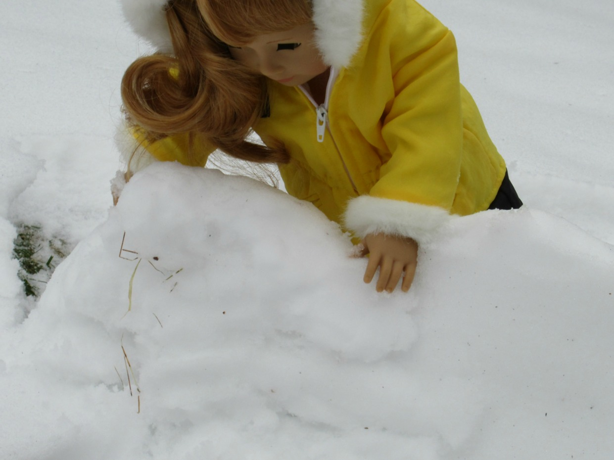 American girl doll snow.jpg