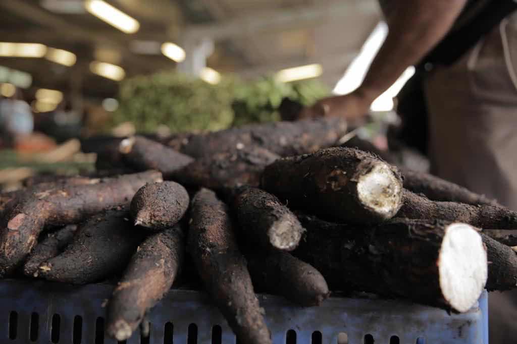 Consejo soberanía alimentaria señala desafíos en Día Alimentación  y
