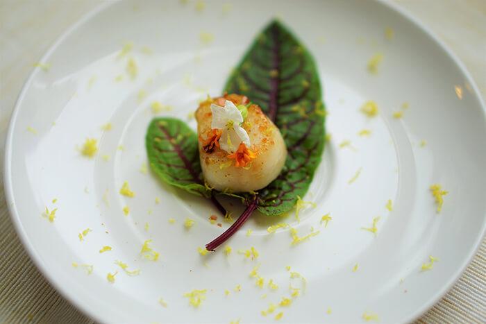 料理新鮮干貝的原則就是不要太多複雜過重的調味;一點點酸、澀,就像在味蕾化開一道口,讓干貝本身的甜能充填進去。新鮮紅酸模,就是簡單又好搭配的生菜。