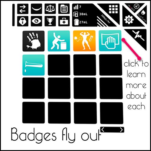 SP HUD Badges fly out.jpg