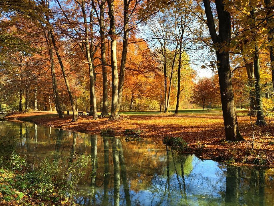 English garden in munich in autumn