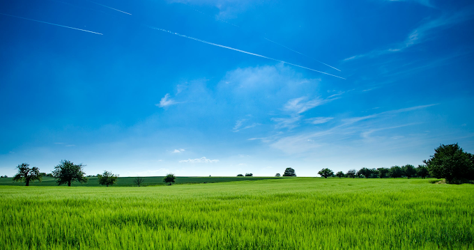 Tips to Get Your Land Sold Quicker and at a Higher Price