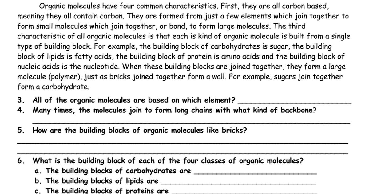Biomolecule reading worksheetpdf Google Drive – Organic Molecules Worksheet