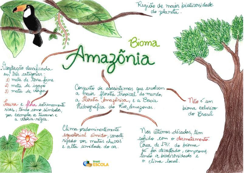 https://s5.static.brasilescola.uol.com.br/img/2019/04/bioma-amazonia_be.jpeg