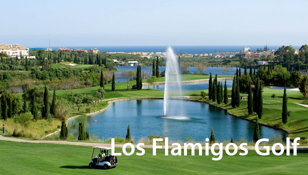 Los Flamingos Golf