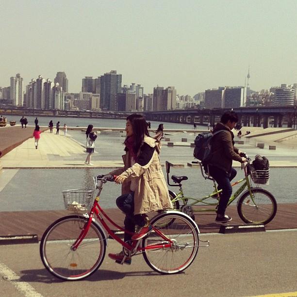 bikes yeoido.jpg