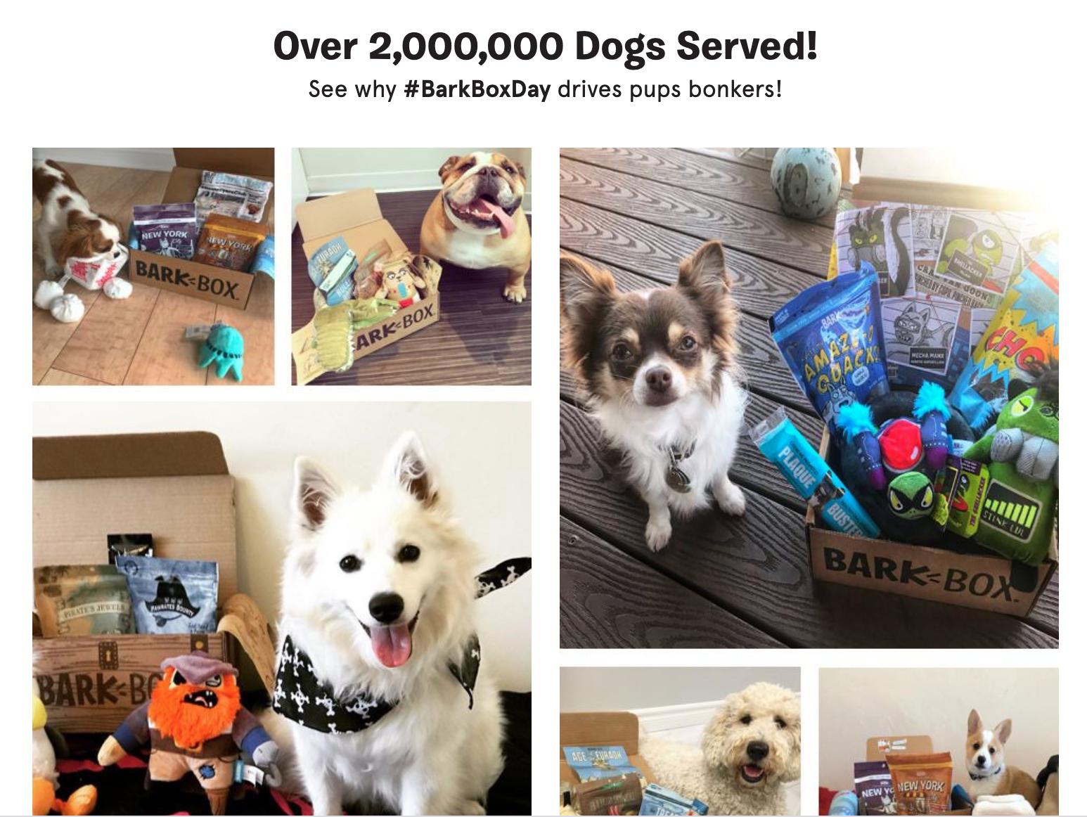 UGC - Dogs - DTC Growth