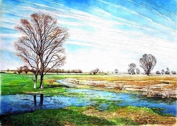 THE SALAMONTA IN THE LOWLANDS I (WET MEADOW) - Illustration (landscape), MMXII - Ink and gouache on carton - 11,81 X 16,54 in.jpg