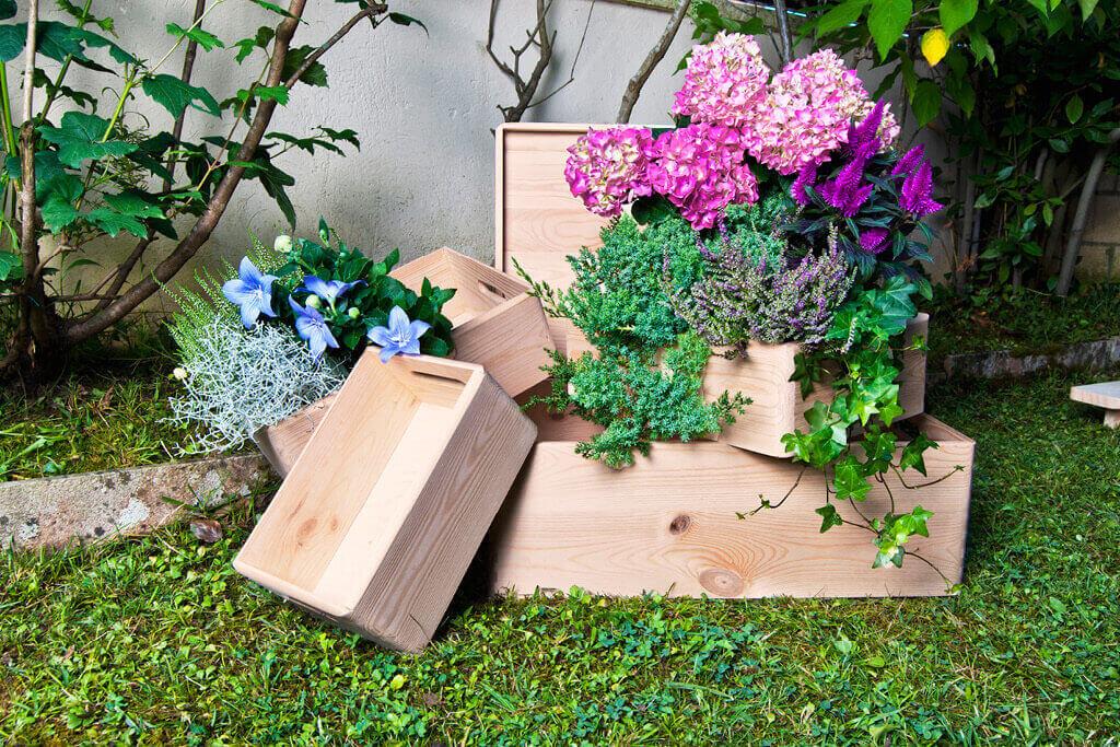 foto cajas con flores jardin.jpg