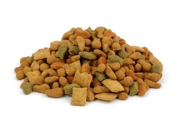 Obrázek krmiva pro psy na začátek recenze