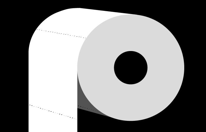 paper toilet