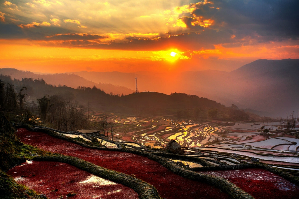 مصاطب الأرز المنحوتة باليد على المنحدرات. ZOJO6coisDR1rAMOUfjV