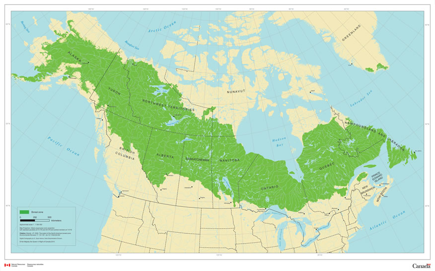 Canadian Boreal Forests Where are the Boreal Forests of Canada located