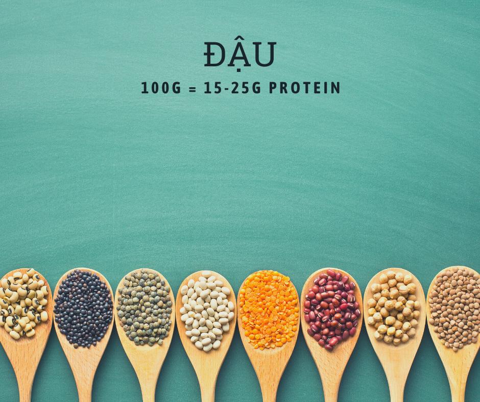 Các loại đậu là nguồn protein đầy đủ dinh dưỡng