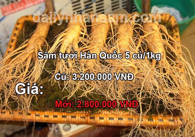 sam-tuoi-Han-Quoc-5-cu