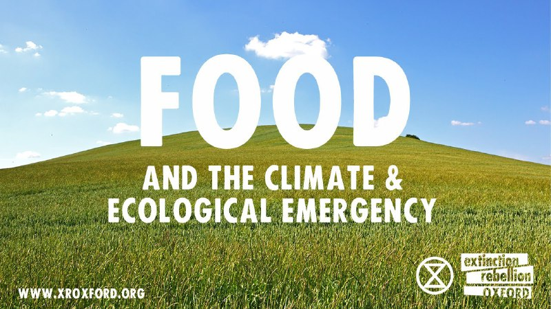 Poster with a green field of grain and a blue sky above. Caption: Food and the climate & ecological emergency