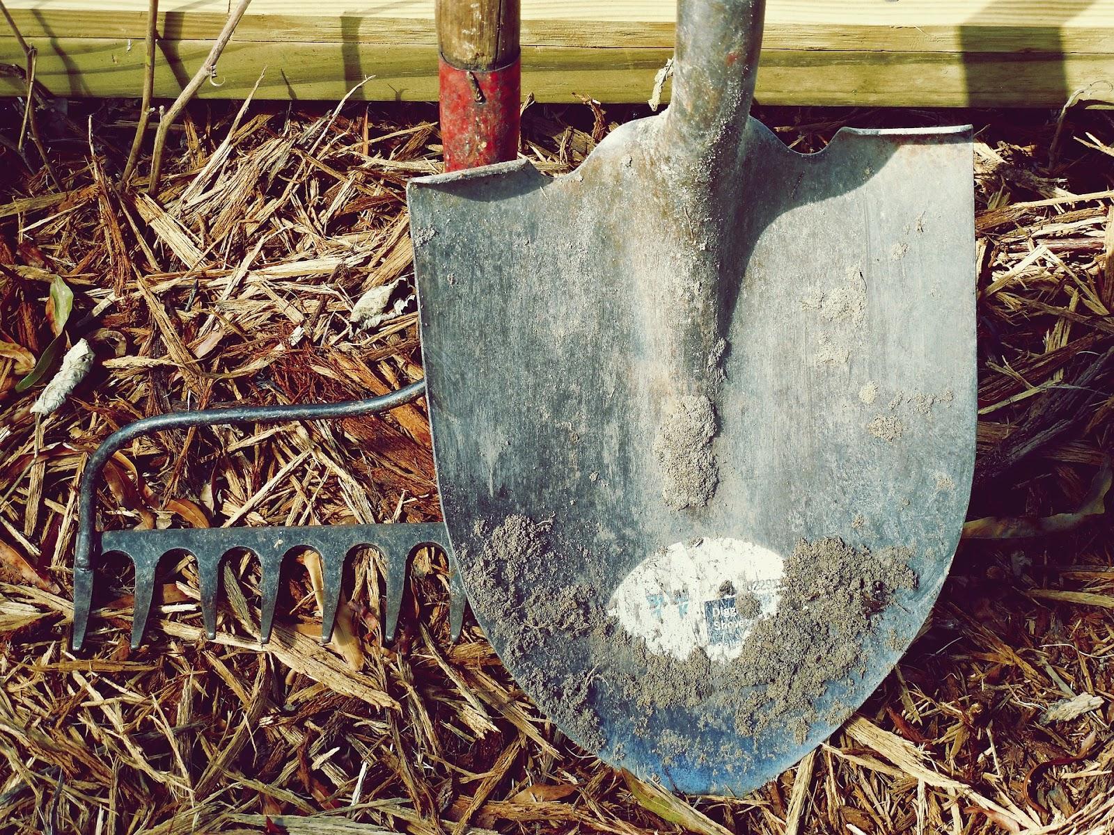 Shovel and rake outside