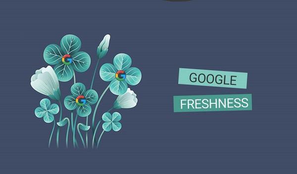 اللگوریتم freshness گوگل چیست؟