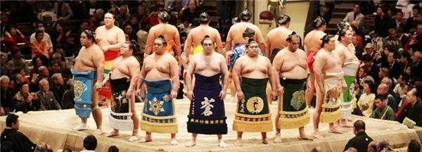 Description: Image result for cuộc sống của các võ sĩ sumo nhật bản