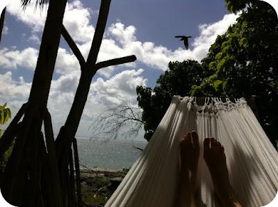 paradise found on wilson island