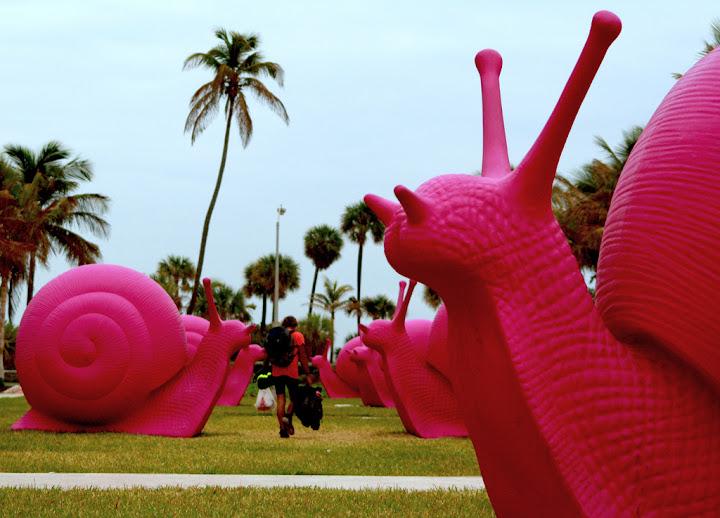 Pink Snails