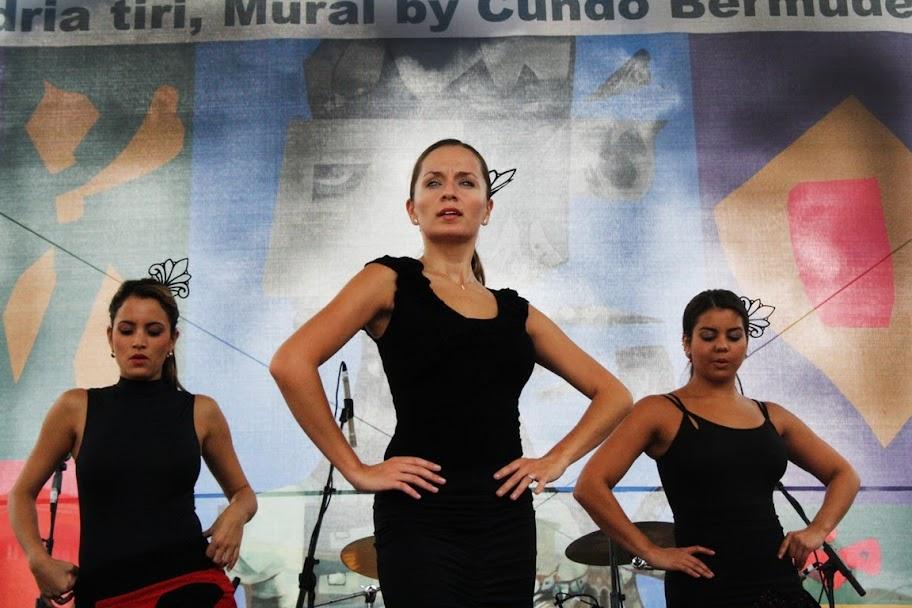 Baila Flamenco