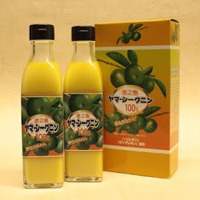 ヤマ・シークニン果汁 300ml×2