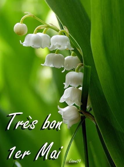 Très bon 1er Mai dans Actualité locale Muguet1370041