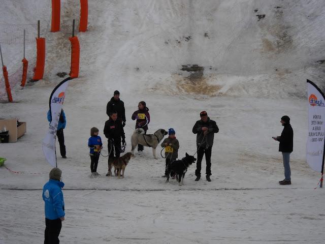 Saison Canicross 2011 DSCN5391