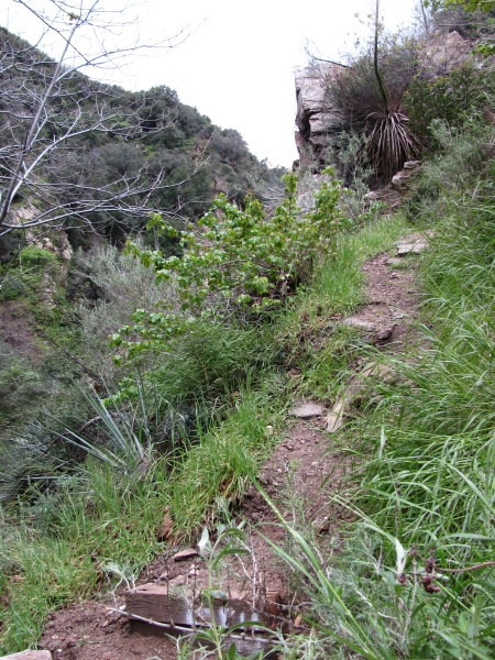 The bottom of the use trail following the path of the incline.