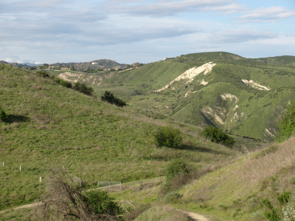 the view back into Las Virgenes canyon with houses at the edge