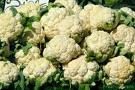 Food of the week--Cauliflower