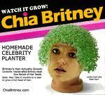 Ch-ch-ch-checking out the facts about ch-ch-ch-chia