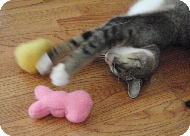 marshmallow peeps cat toys