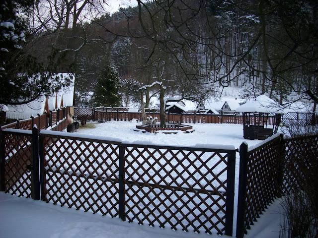 Małe Zoo pokryte śniegiem