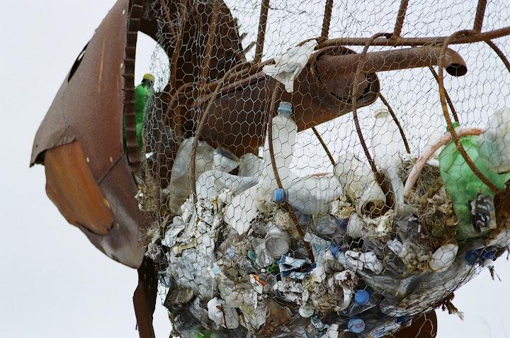 Rybi śmietnik (fot. M. Nakonieczny)