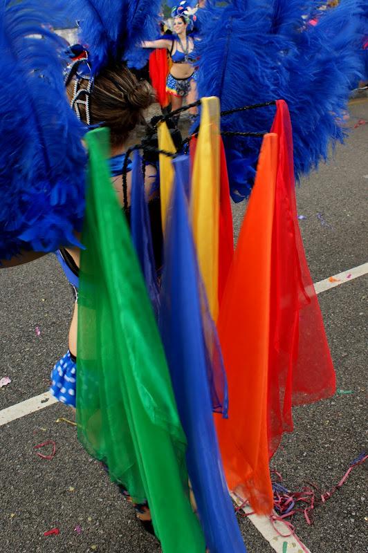 Carnaval de Estarreja 2011, Cores