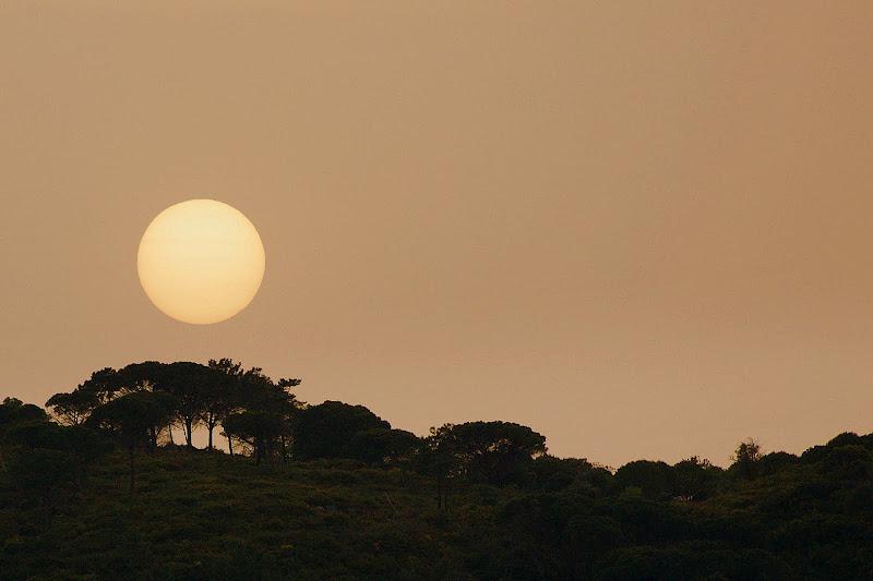 O sol na Arrábida em Setúbal