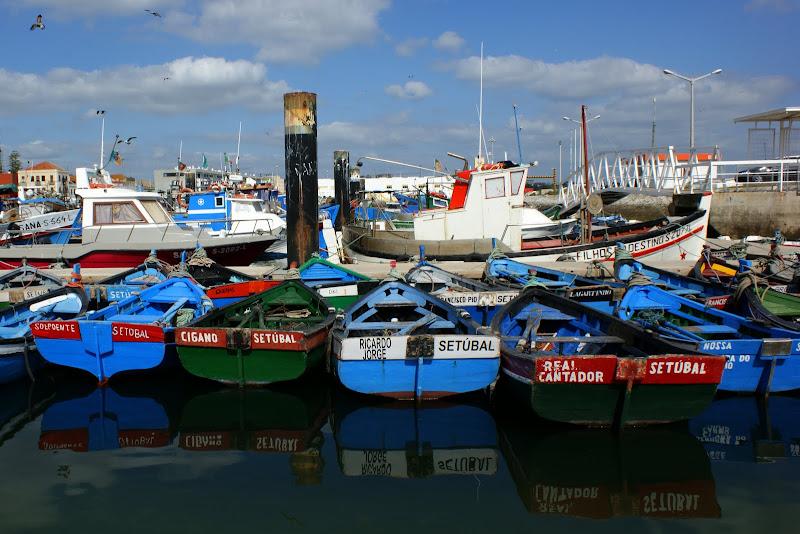Os botes, Setúbal