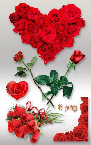 Клипарт PNG - Красные розы к 8 Марта