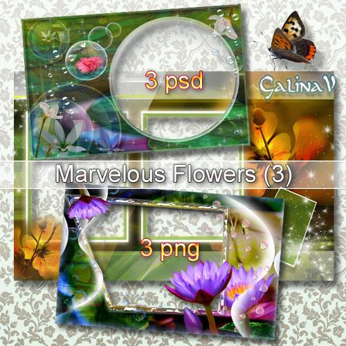 Набор рамок для фото - Дивные цветы (Part 3)